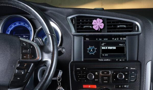 car-Detelina_violet_3