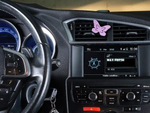 car-Peperuda_violet_3