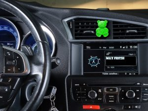 car-bear_green_3