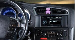 car-bear_violet_3