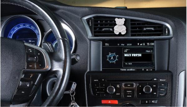 car-bear_white_3