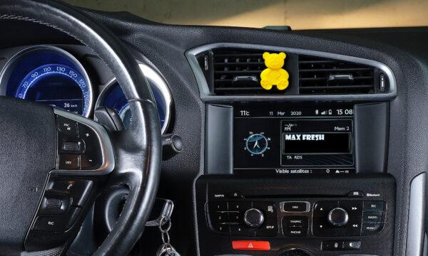 car-bear_yellow_3